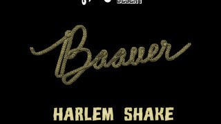 Harlem Shake-Baauer Official Lyrics