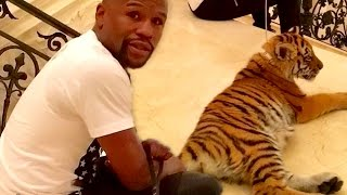 The Most OUTRAGEOUS Celebrity Pets!