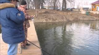 Видная рыбалка адрес