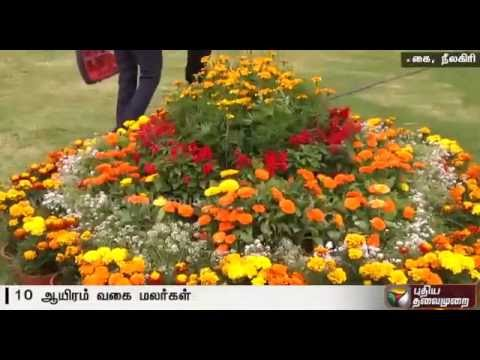 Flower-exhibition-begins-in-Ooty-Details