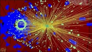 What Now For The Higgs Boson?