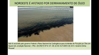 Derramamento de óleo - Impactos socioeconômicos na cadeia produtiva do pescado - None