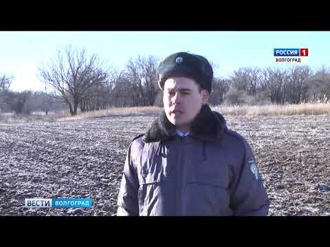 Управлением Россельхознадзора проведена проверка содержания сельхозугодий в Волгоградской области