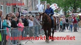Paarden kijken op de Paardenmarkt in Heenvliet – 2018