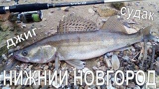 Клев рыбы в нижним новгороде