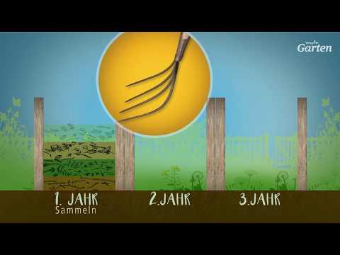 Kompost: So funktioniert das Drei-Kammer-System | MDR Garten