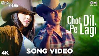 Chot Dil Pe Lagi Song Video - Ishq Vishk   Alisha Chinai