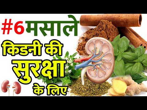 6 Incredible Spices For Kidney Health À¤• À¤¡à¤¨ À¤• À¤¸ À¤µà¤¸ À¤¥ À¤°à¤–न À¤• À¤² À¤ À¤‡à¤¨ 6 À¤®à¤¸ À¤² À¤• À¤– À¤¸ À¤§ À¤¯ À¤¨ À¤°à¤– Captionsmaker Subtitles Editor For Youtube