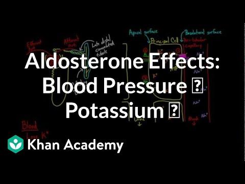 Volksheilmittel für Herz und Bluthochdruck