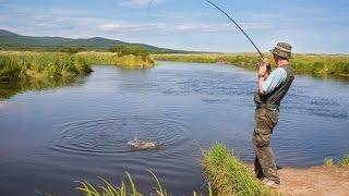 Клев рыбы на неделю в краснодаре