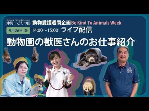 動物愛護週間企画【動物園の獣医さんのお仕事紹介】沖縄こどもの国ズージアムライブ!