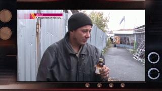 Боярышник и стеклоочистители: что пьют в России? – Гражданская оборона, 31.01.2017