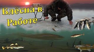 Зимняя морская рыбалка во владивостоке