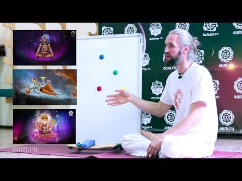 Основы йоги. Часть 1