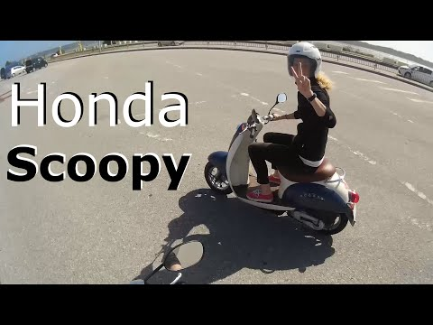 My Wife's 50cc Honda Scoopy Scooter