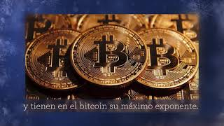 Bitcoin - https://bitcoindividido.com/