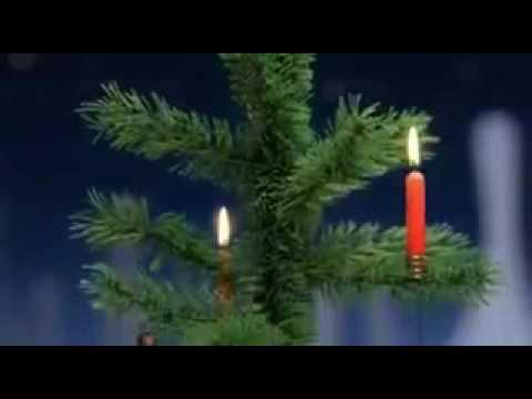 Nunca pongas velas en tu árbol de navidad!!!!!!!!