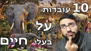 10 עובדות שלא תאמינו על בעלי חיים!!!