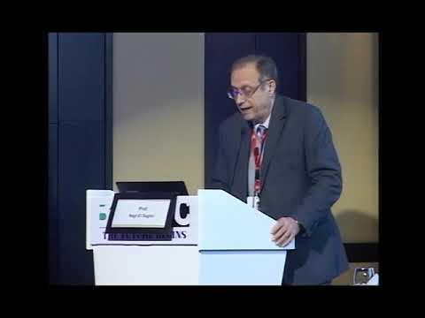 Prof Nagi Saghir
