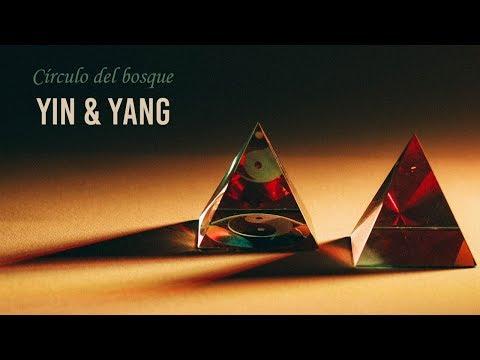 Círculo del Bosque video Yin & Yang - Marzo 2020