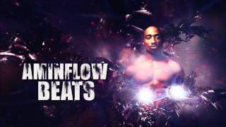 West Coast Rap Beat Old School Underground Instrumental 2pac Style 2014 (Aminflow prod.)