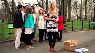 The Harvard Opportunes • Wonderful (Annie Lennox) • Central Park • 4/13/13