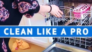 CLEAN LIKE A PRO: Cleaning the Dishwasher!