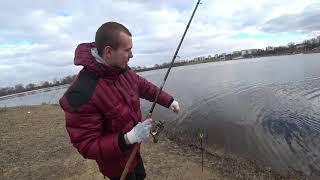 Клев рыбы в речице гомельская область