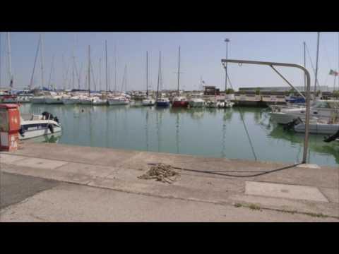 Giulianova, Cartone è il nuovo consigliere dell'ente porto