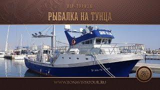 Рыбалка в хорватии на тунца стоимость