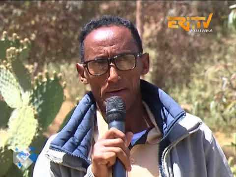 Teacher goitom the   Role Models teacher in Eritrean