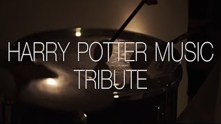 Harry Potter Music Indian Tribute | Tushar Lall | The Indian Jam Project