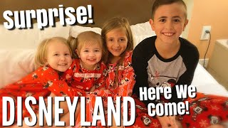 OUR EPIC SURPRISE FAMILY TRIP TO DISNEYLAND!! / Howd We Keep This Secret From Them For Two Months!?