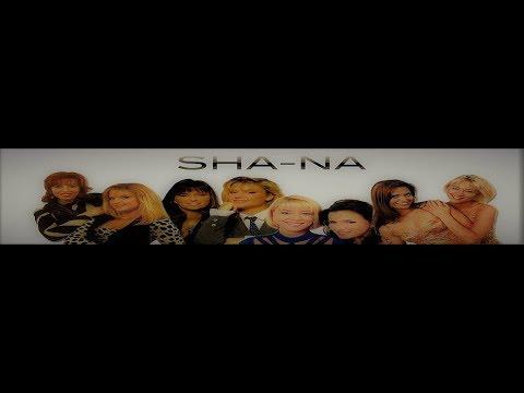 Beste van ...Sha-Na (Super-Mix)