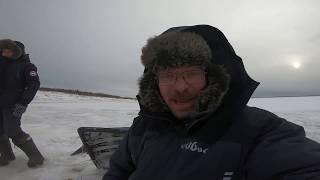 Берфорум отчет с рыбалки 2019