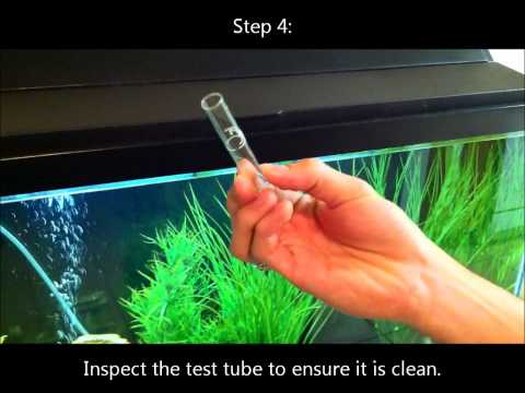 How to Test the pH Level in a Fish Aquarium