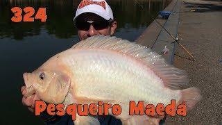Programa Fishingtur na Tv 324 - Pesqueiro Maeda