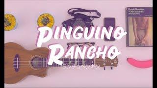 Pingüino Rancho - Mi Sobrino Memo // letra