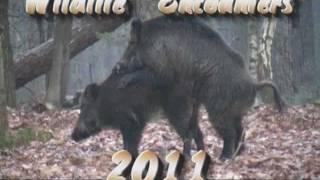 Wildlife Encounters 2011 part 1.Veluwe
