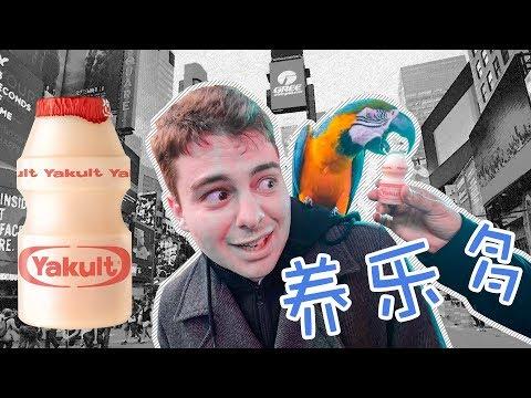 紐約路人第一次喝養樂多,連它都喜歡...
