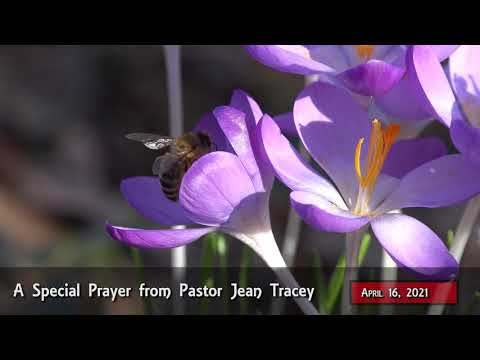 2021-Apr-16 - Pastor Jean Tracey Prayer