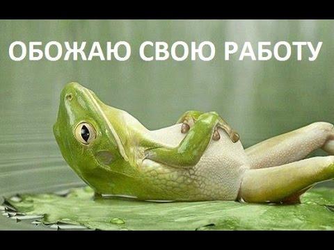 CPA Рунета. СРА бесплатный и платный трафик