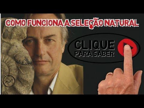 O gene egoísta, por Richard Dawkins | Evolucionismo e seleção natural