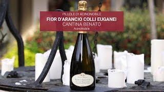Fiori d'Arancio DOCG - Colli Euganei - Cantina Benato