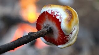 10 BEST Campfire Snacks!!!! Camping Foods And Campfire Cooking.