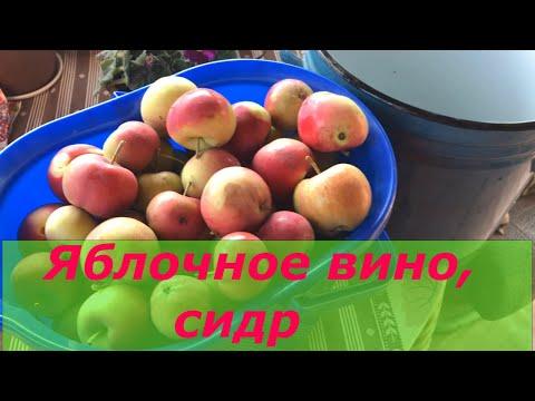 Яблочное вино с помощью стиральной машинки