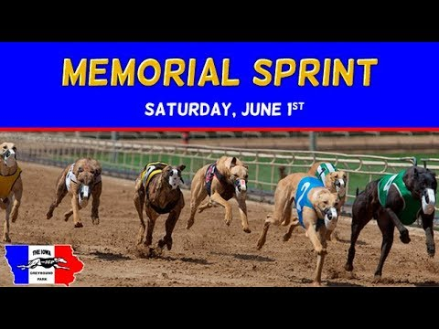 2019 IGP Memorial Sprint Stake