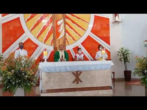 Missa 29° Domingo do Tempo Comum