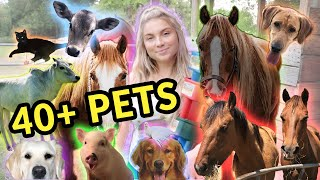 Feeding ALL My Pets in One Video | 40+ Pets!