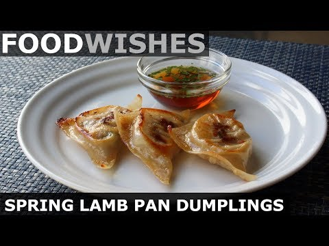 SPRING LAMB PAN-FRIED DUMPLINGS – FOOD WISHES